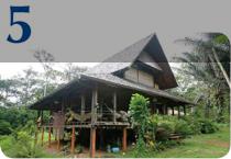 Une maison toute en bois