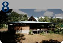 Une maison isolée en forêt